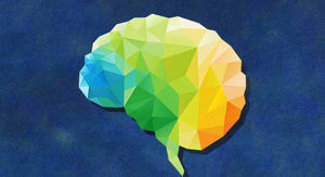 colorful diagram of practical brain science