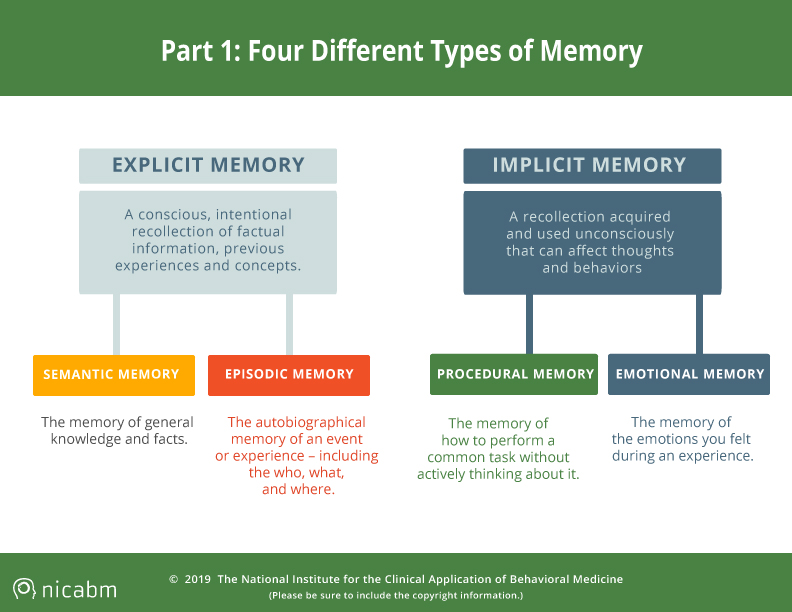 trauma impacting four types of memory infographic