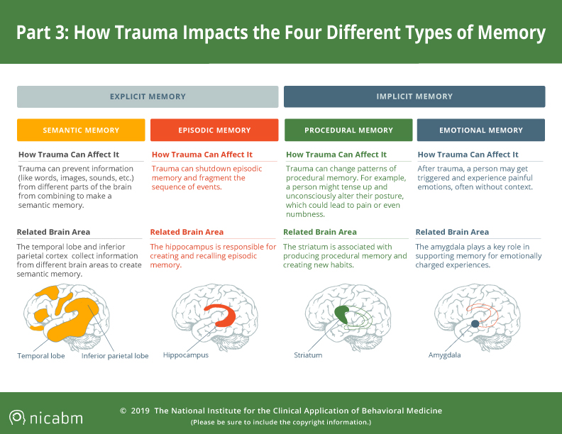trauma impacts four types of memory infographic