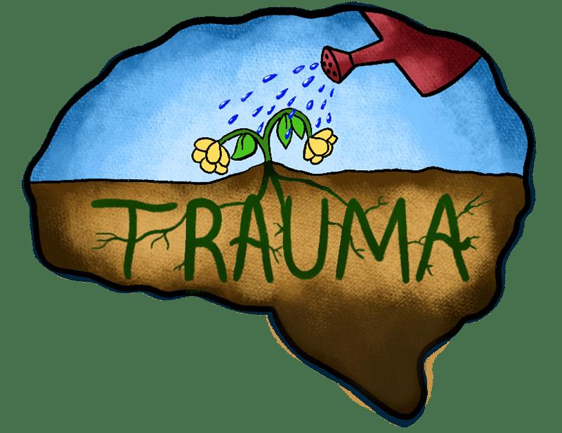 Brain and Trauma