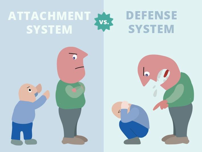 defense system vs. attachment system