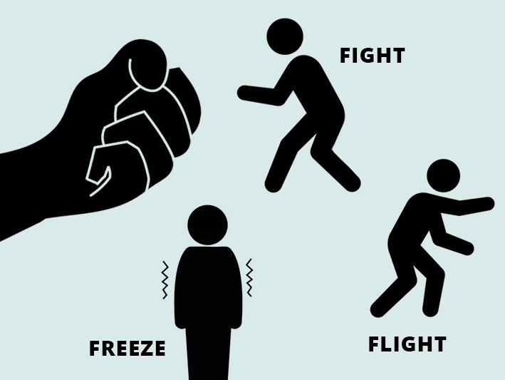 fight, flight, freeze