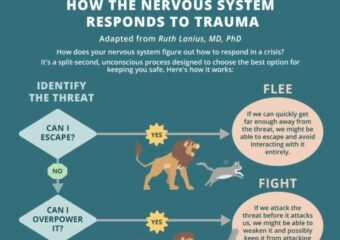 The Nervous System's Response to Trauma and Fight, Flight, Freeze, Shutdown in Therapy